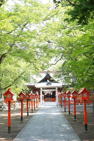 群馬前橋和婚総社神社