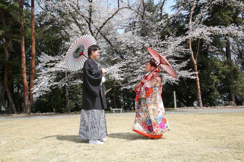 群馬県和婚神前式桜神社結婚式