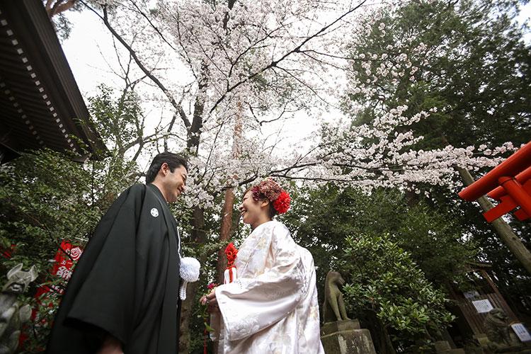 群馬桜和婚神社結婚式