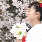 桜神社結婚式前撮り撮影