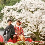 桜の時期に神社結婚式格安プラン